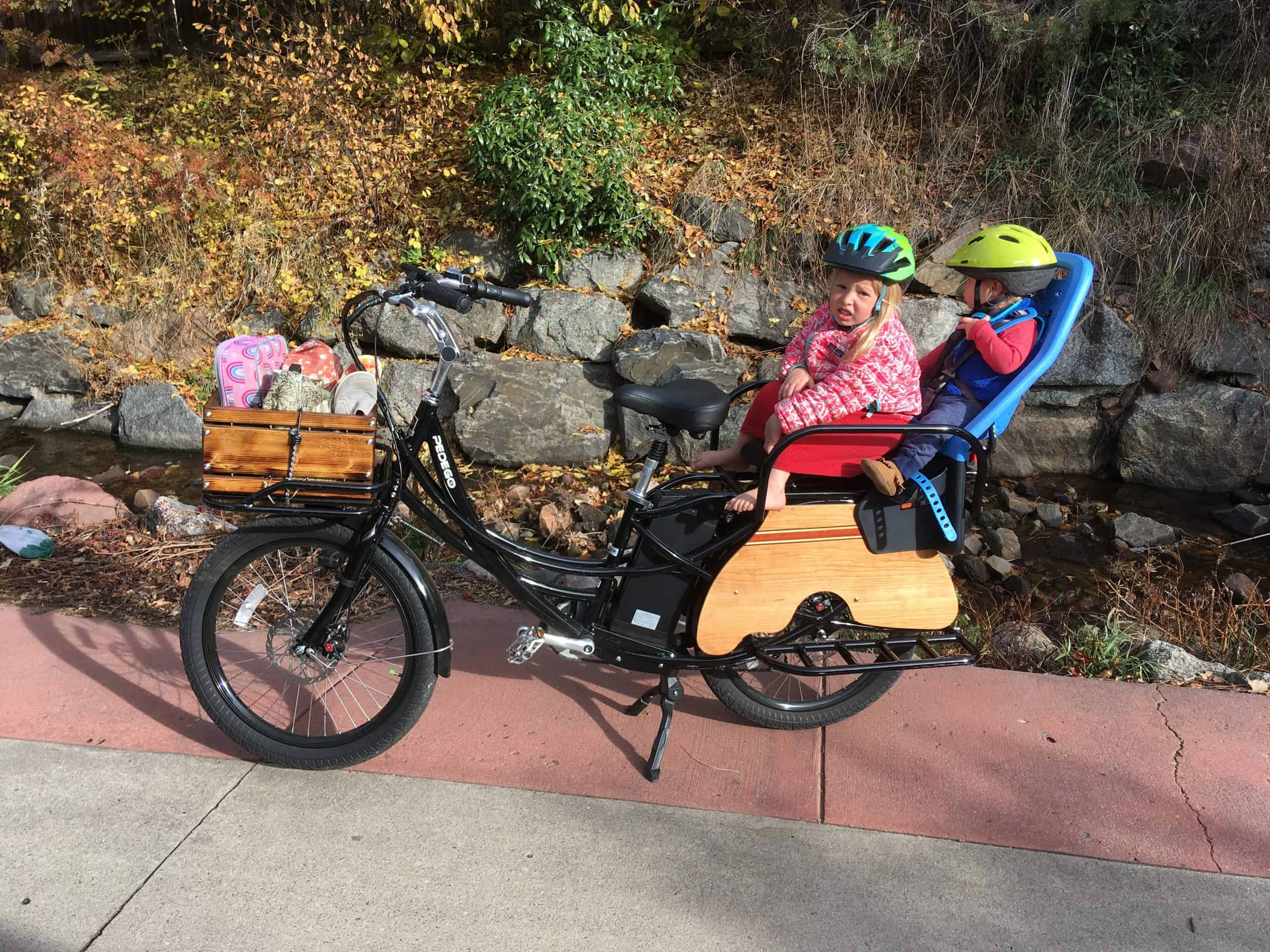 Got a Companion? Best Electric Bikes with Passenger Seat (Adult, Child or Dog) 21