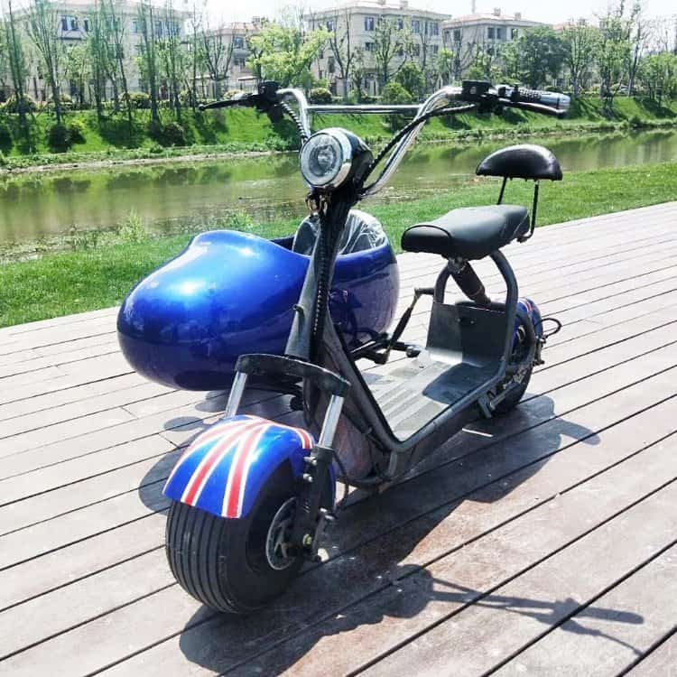 Got a Companion? Best Electric Bikes with Passenger Seat (Adult, Child or Dog) 26