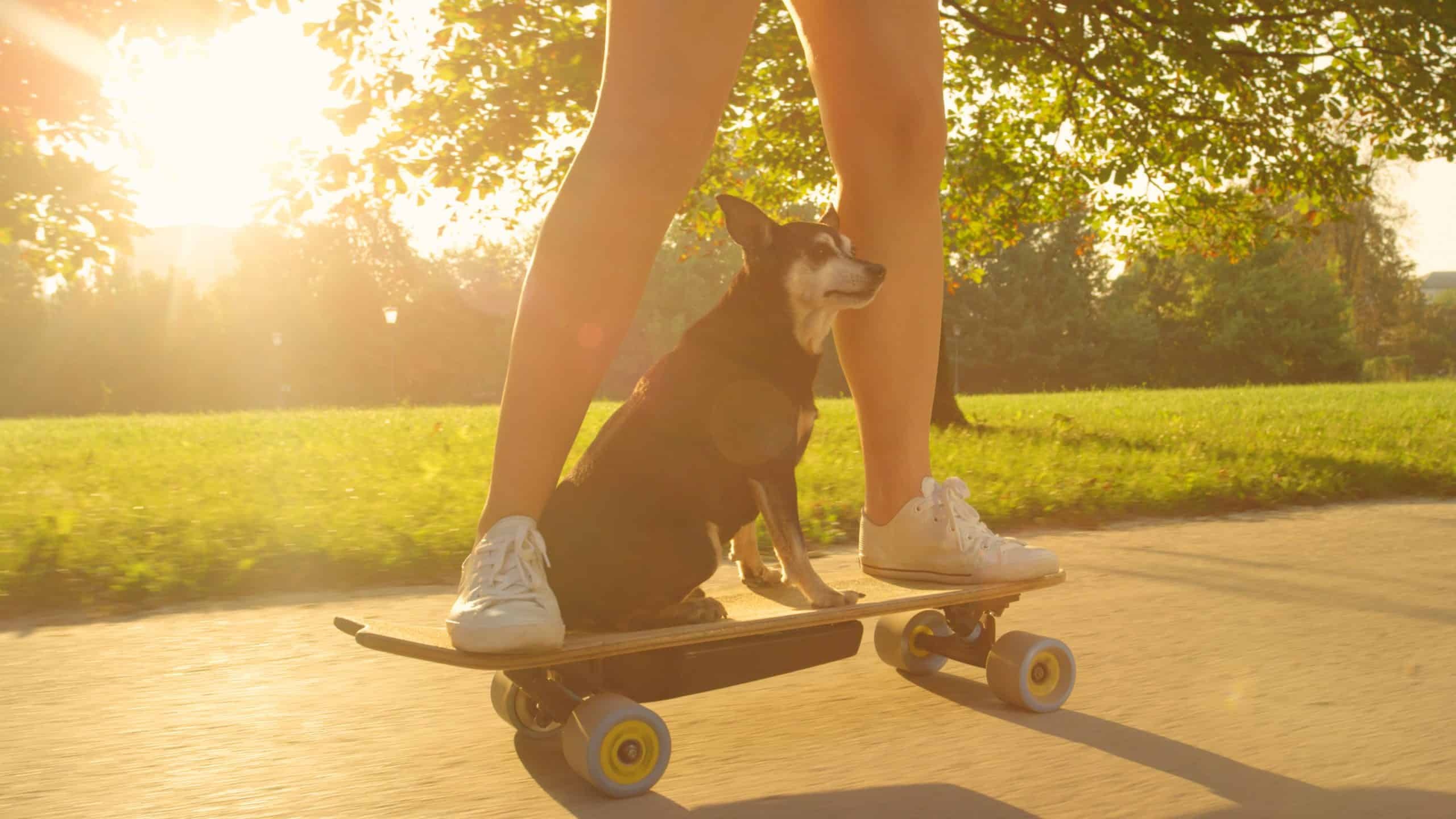 Why Are Electric Skateboards So Expensive?