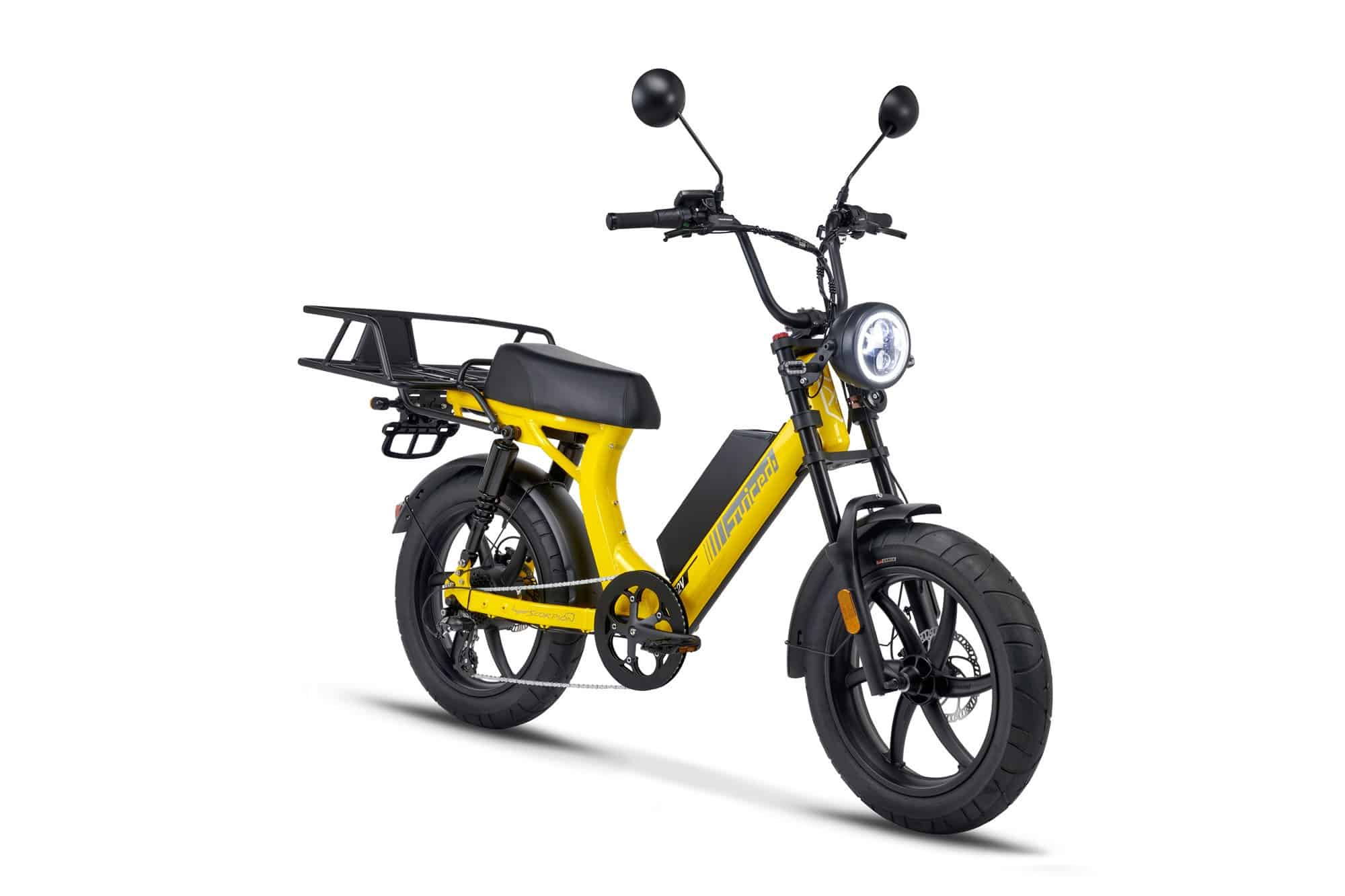 Best Electric Bike for Delivery 2